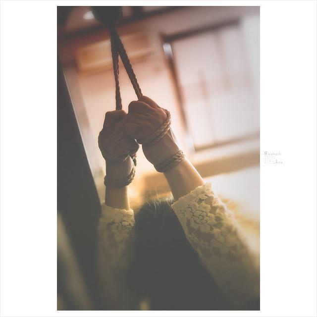 手首縛りと脱がされパンツ 緊縛奴隷・緊縛調教