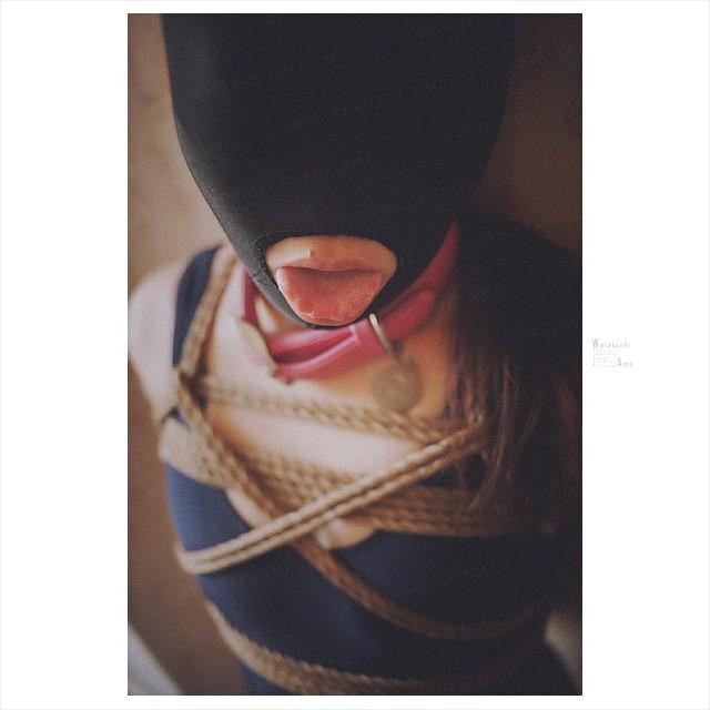 全頭マスクの舌出しM女。首輪にスクール水着のマゾ奴隷 コスプレ調教・制服奴隷