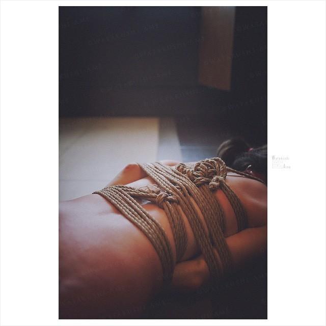 素人M女の鞭打ち調教。バラ鞭と一本鞭で主従を教えこむ 奴隷調教・主従調教